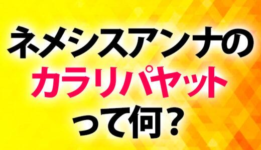 【最強武術】ネメシスアンナのカラリパヤットて何?【インド発祥】